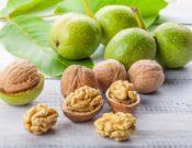 Кушайте грецкие орехи – будете здоровы!