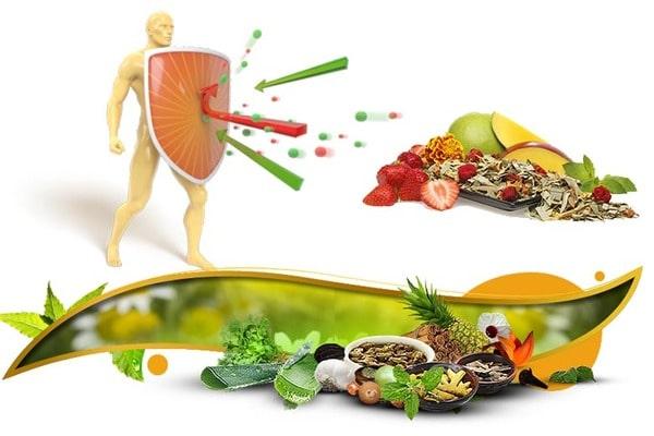 Причины ослабления иммунитета. Народные методы укрепления иммунитета без лекарств